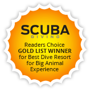 Scuba Dive Gold List Winner